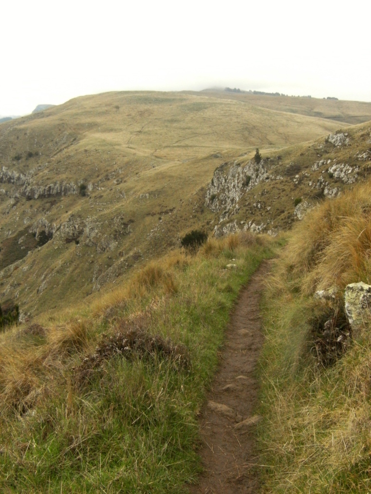 The path from Godly Head along the Port Hills