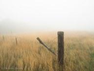 Fence Post at Burns Farm