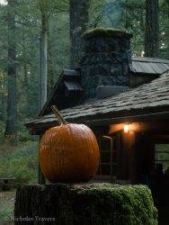 pumpkin - the victim