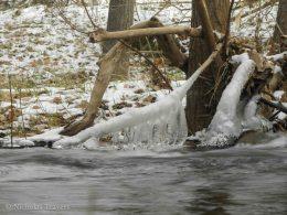 frozen sunday's ice muse