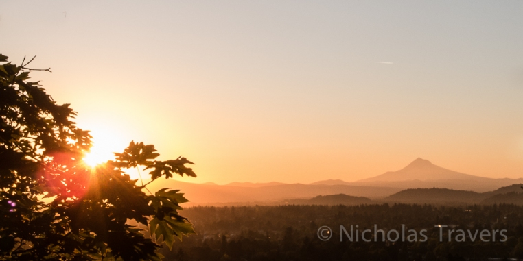 late summer sunrise in portland, OR Mt hood in the distance, glowing leaves in the fore ground