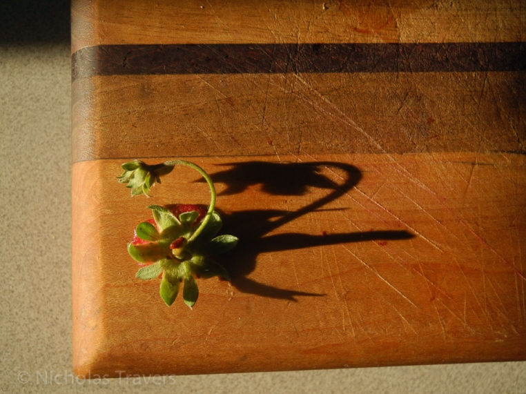a lone surviving straberry stem, of the pounds picked from Sauvie's Island in the late spring, casts a shadow. Those straberries made a tasty cake.