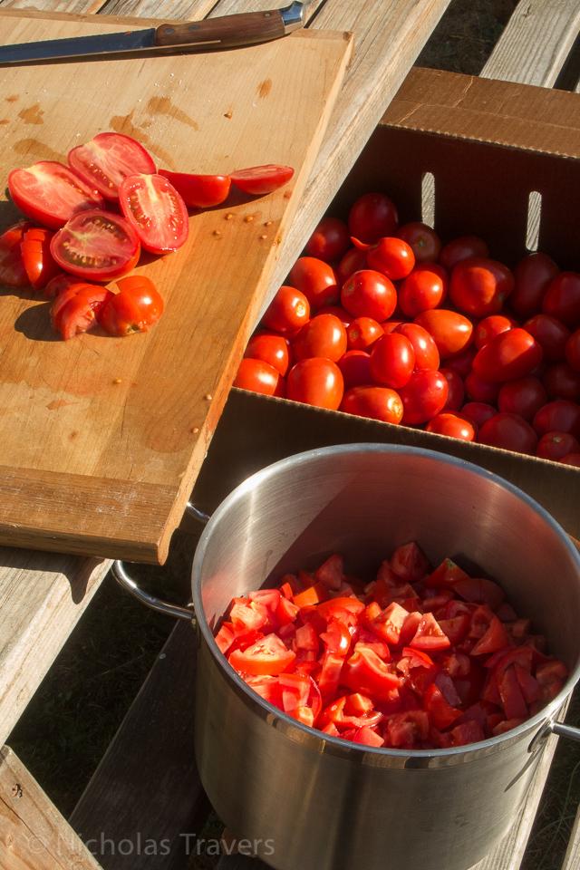 lots of romas from Flying Onion Farm to slice up! - - http://www.flyingonionfarm.com
