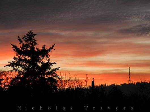 0106_passionate sunset-0162
