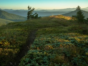 A trail leads through morning frost, over misty valleys to Mt Adams.
