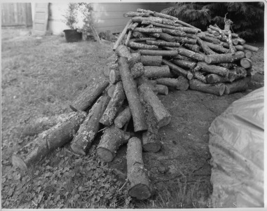 Wood Pile Sculpture, 2014