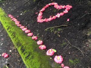 0214_NicholasTravers_Valentine's Heart_0567